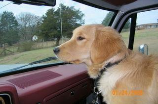 Serra in truck
