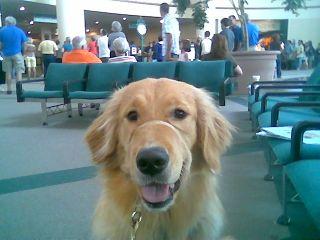 Serra airport 6 20 2009