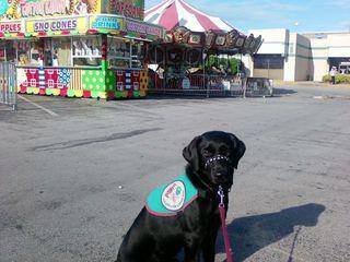 Rylee carnival